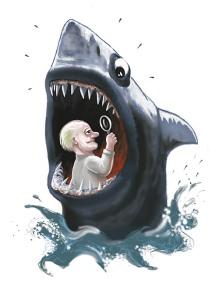 shark-1411.jpg