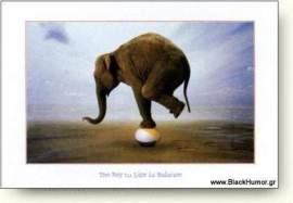 elefantas_002.jpg