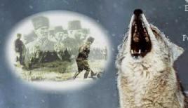 greywolves_kemal.jpg